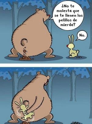 pelillos