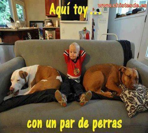aqui_toy