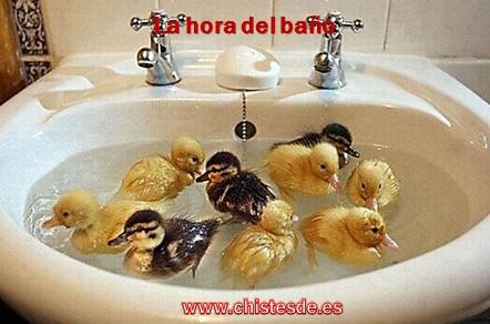 hora_del_bano