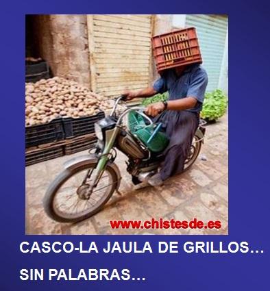 casco_jaula_grillos