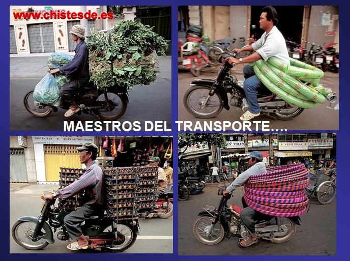 maestros_transporte