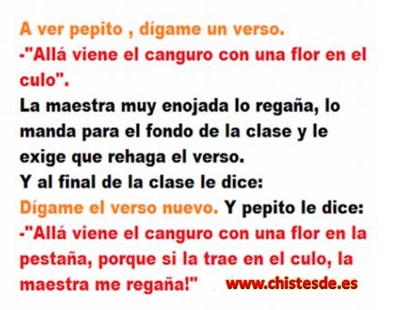 el_canguro
