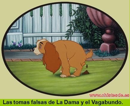 tomas_falsas
