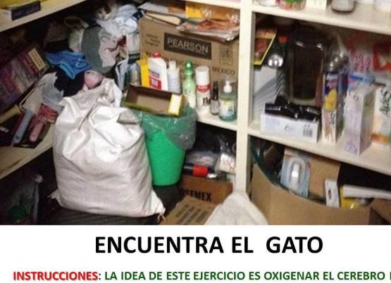 Encuentra_el_gato