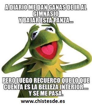 a_diario