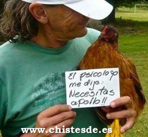 a_pollo