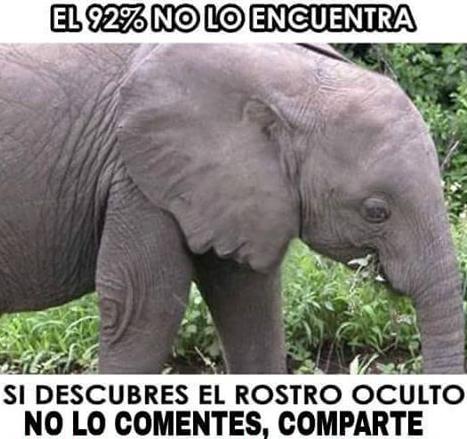 el_rostro